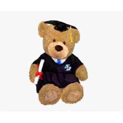 Graduation Bear(Sitting Version)
