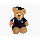 Graduation Bear(Sitting Version)